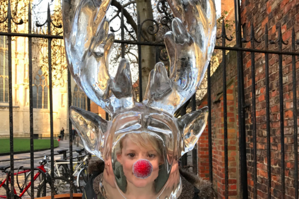 Stockport's Giant Ice Sculpture Trail
