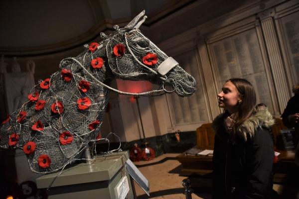 Wire War Horse - one of Stockport's new art exhibitions
